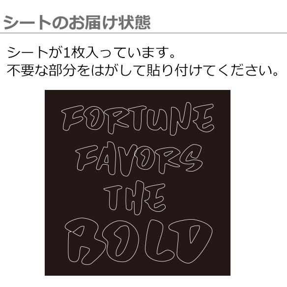 【アイロンシート】FORTUNE