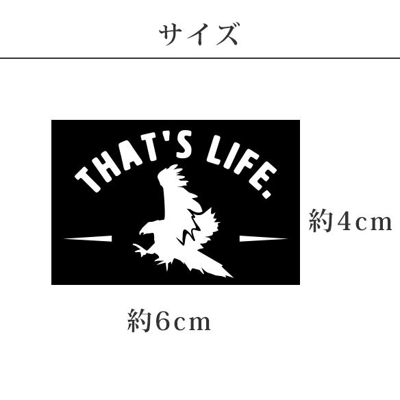 【アイロンシート】スモールアニマル(イーグル)3枚入り