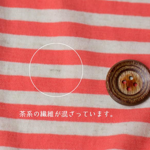【パック】初夏の気分わくわくパック